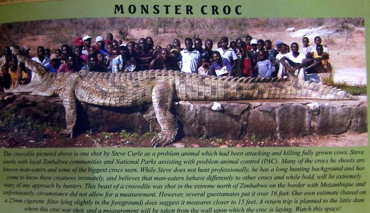 http://www.abolitionist.com/reprogramming/crocodile.jpg